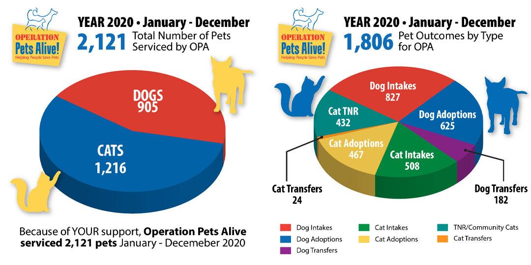 2020 Numbers & 2021 TNR Update