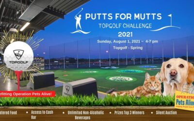 Putts for Mutts TopGolf Challenge