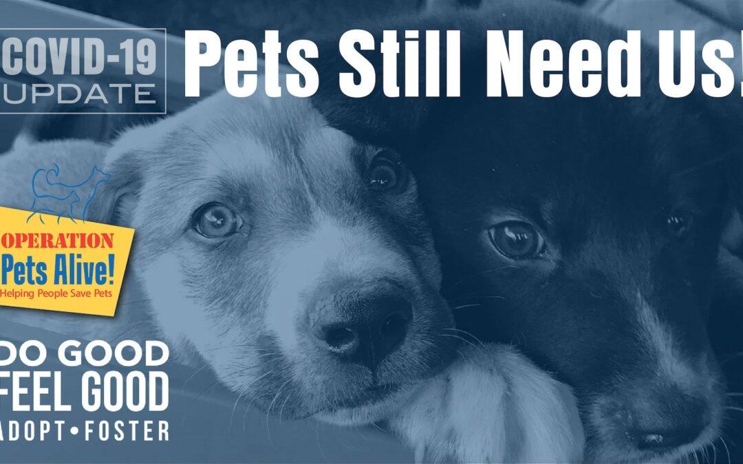 OPA COVID-19 Update: Pets Still Need Us!