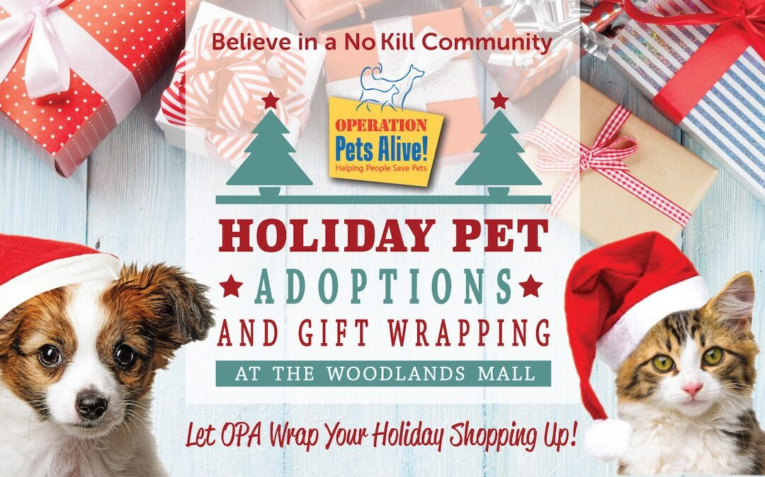 OPA Holiday Pet Adoptions at The Woodlands Mall
