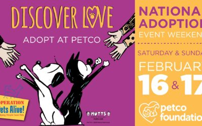 National Adoption Weekend with Petco