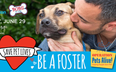 OPA Teams up with Petco to Recruit Fosters